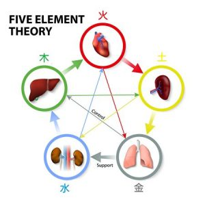 Five Element Theory. Oriental Medicine. The five element theory is used in traditional chinese medicine as a way to diagnose and treat illness.
